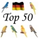 Hier gehts zur neuen  50 Topliste